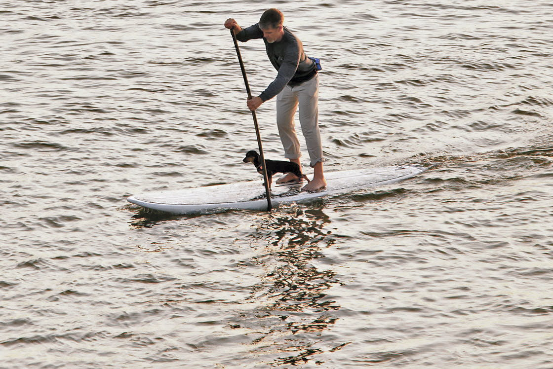 Stand-Up Paddle Boarding (SUP)